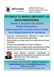 Taller Marca y Blog 02_06_2015_001